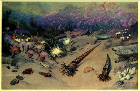 Painting of the Ordovician Sea